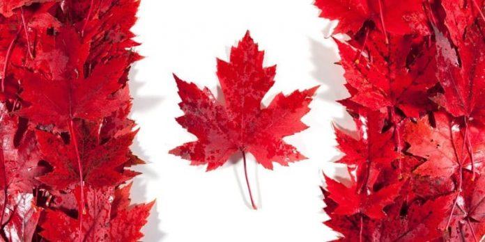 Canadá apresenta exigências para entrar no país